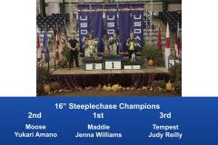 2019-Cynosport-Steeplechase-Champions-4