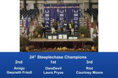 2019-Cynosport-Steeplechase-Champions-7